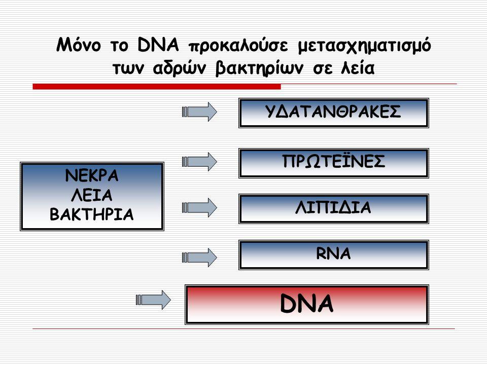 Μόνο το DNA προκαλούσε μετασχηματισμό των αδρών βακτηρίων σε λεία