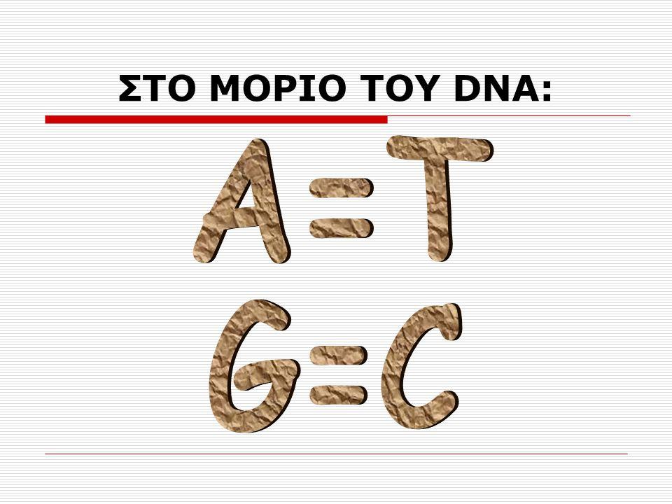 ΣΤΟ ΜΟΡΙΟ ΤΟΥ DNA: Α=Τ G=C