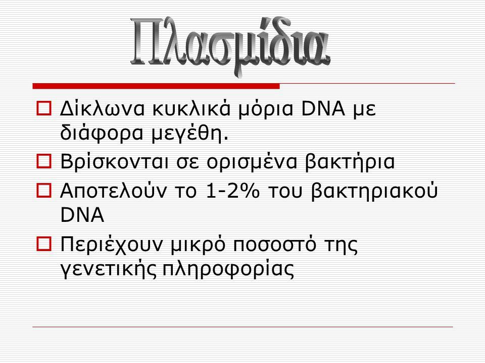 Πλασμίδια Δίκλωνα κυκλικά μόρια DNA με διάφορα μεγέθη.