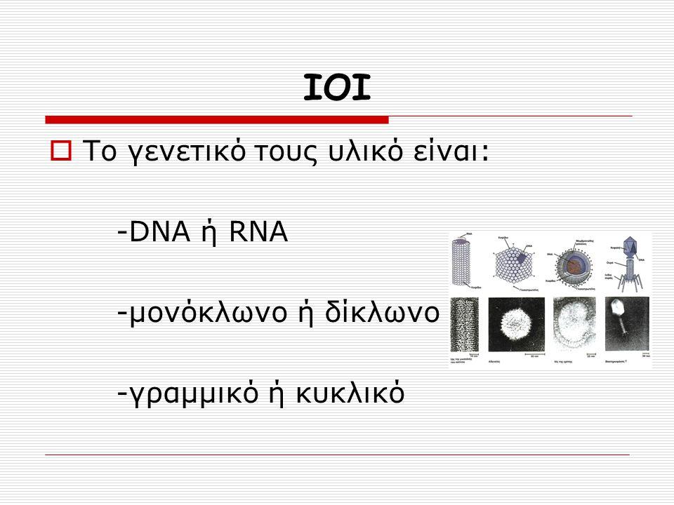 ΙΟΙ Το γενετικό τους υλικό είναι: -DNA ή RNA -μονόκλωνο ή δίκλωνο