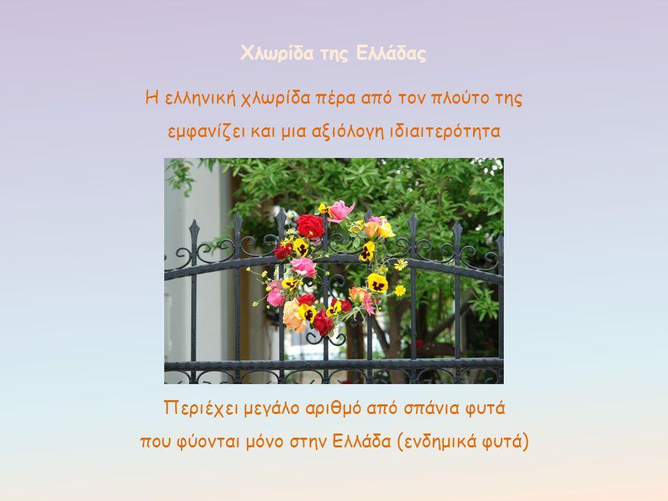 Η ελληνική χλωρίδα πέρα από τον πλούτο της