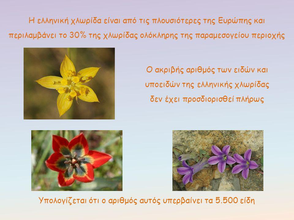 Υπολογίζεται ότι ο αριθμός αυτός υπερβαίνει τα 5.500 είδη