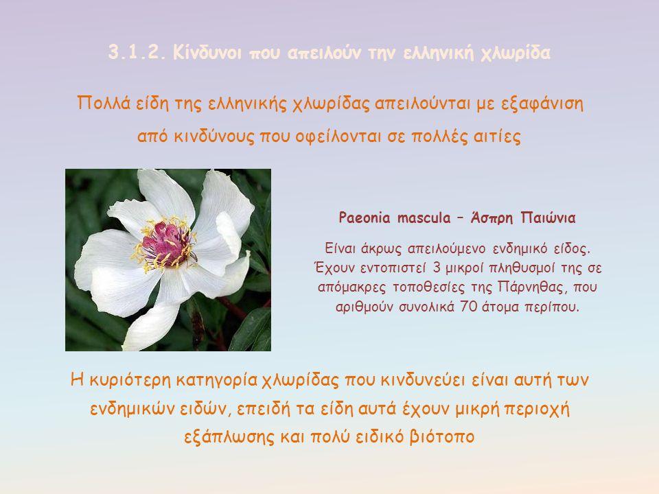 3.1.2. Κίνδυνοι που απειλούν την ελληνική χλωρίδα