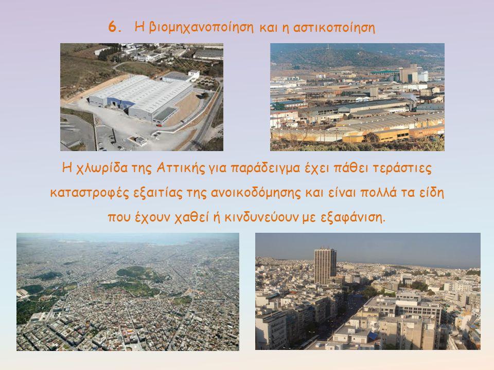 6. Η βιομηχανοποίηση και η αστικοποίηση.