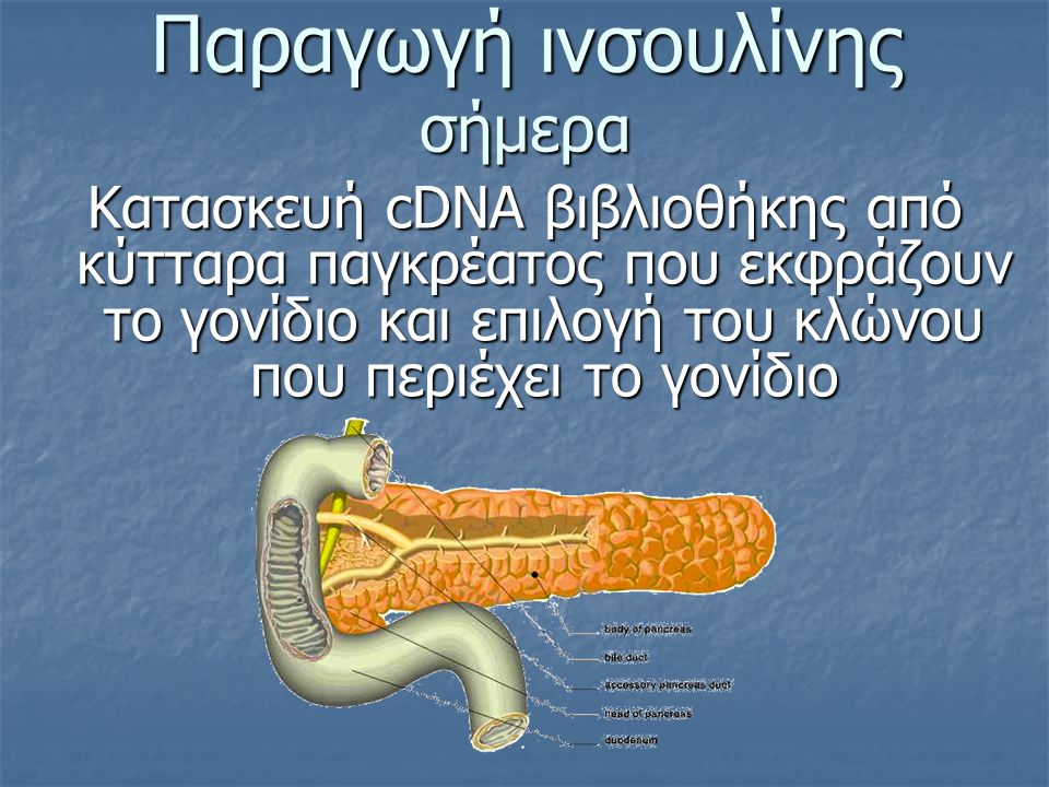 Παραγωγή ινσουλίνης σήμερα