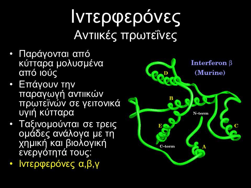 Ιντερφερόνες Αντιικές πρωτεΐνες