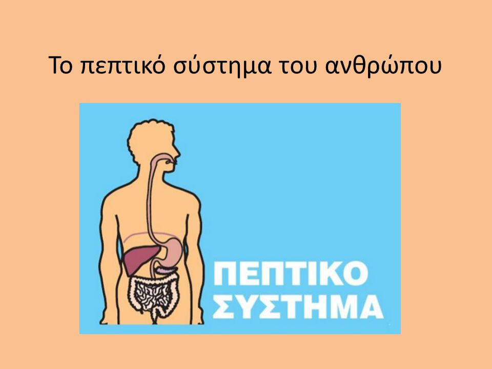 Το πεπτικό σύστημα του ανθρώπου