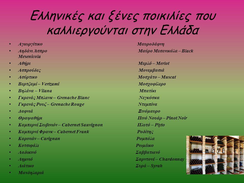 Ελληνικές και ξένες ποικιλίες που καλλιεργούνται στην Ελλάδα