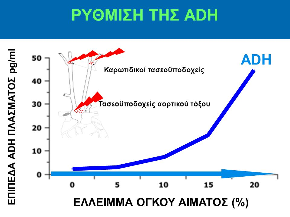 ΡΥΘΜΙΣΗ ΤΗΣ ADH ADH ΕΛΛΕΙΜΜΑ ΟΓΚΟΥ ΑΙΜΑΤΟΣ (%)