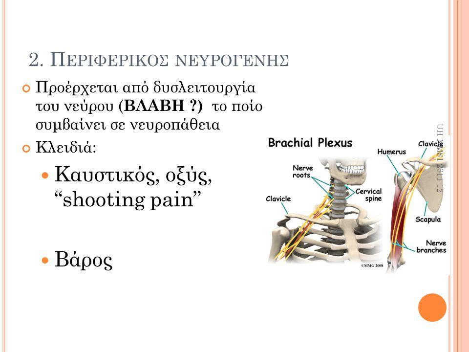 2. Περιφερικοσ νευρογενησ