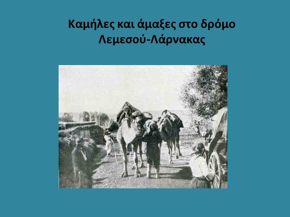 Καμήλες και άμαξες στο δρόμο Λεμεσού-Λάρνακας