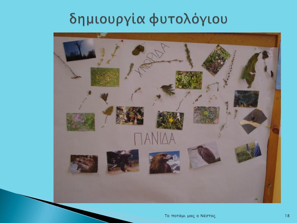 δημιουργία φυτολόγιου
