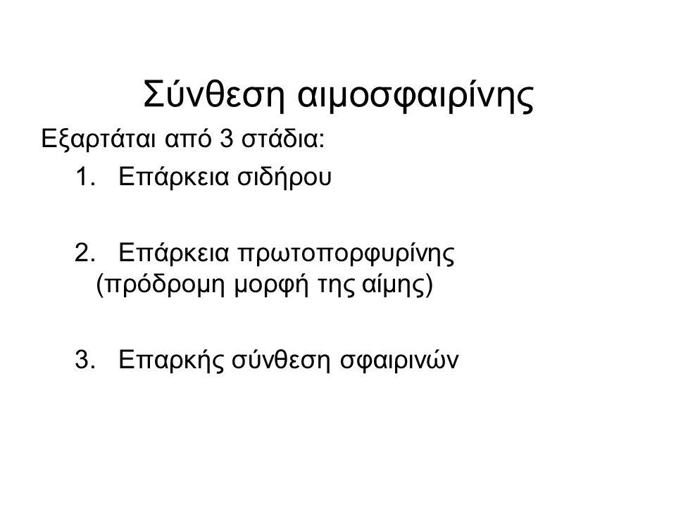 Σύνθεση αιμοσφαιρίνης
