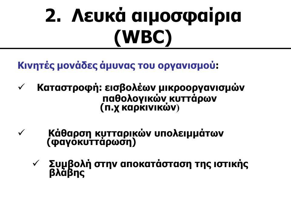 2. Λευκά αιμοσφαίρια (WBC)