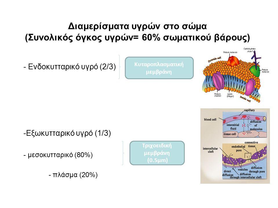 Κυταροπλασματική μεμβράνη