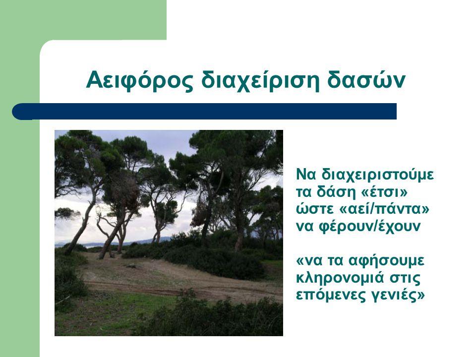 Αειφόρος διαχείριση δασών