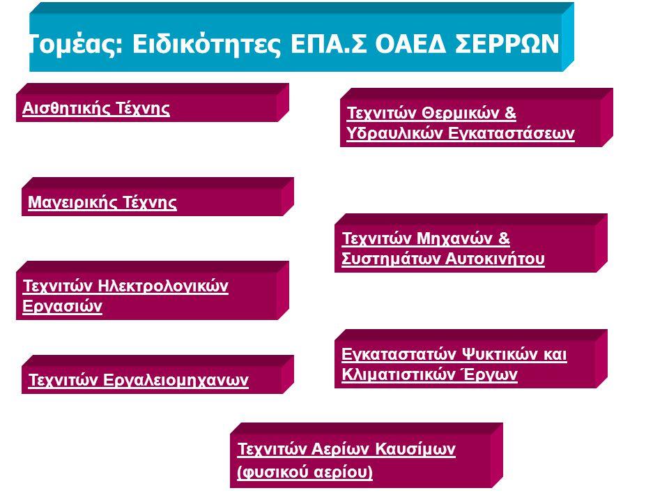 Τομέας: Ειδικότητες ΕΠΑ.Σ ΟΑΕΔ ΣΕΡΡΩΝ