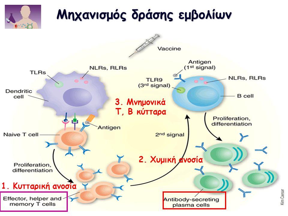 Μηχανισμός δράσης εμβολίων