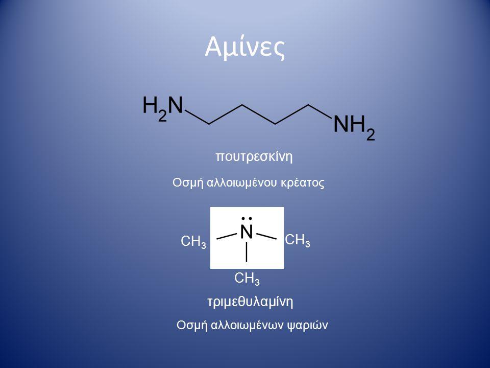 Αμίνες πουτρεσκίνη CH3 CH3 CH3 τριμεθυλαμίνη Οσμή αλλοιωμένου κρέατος