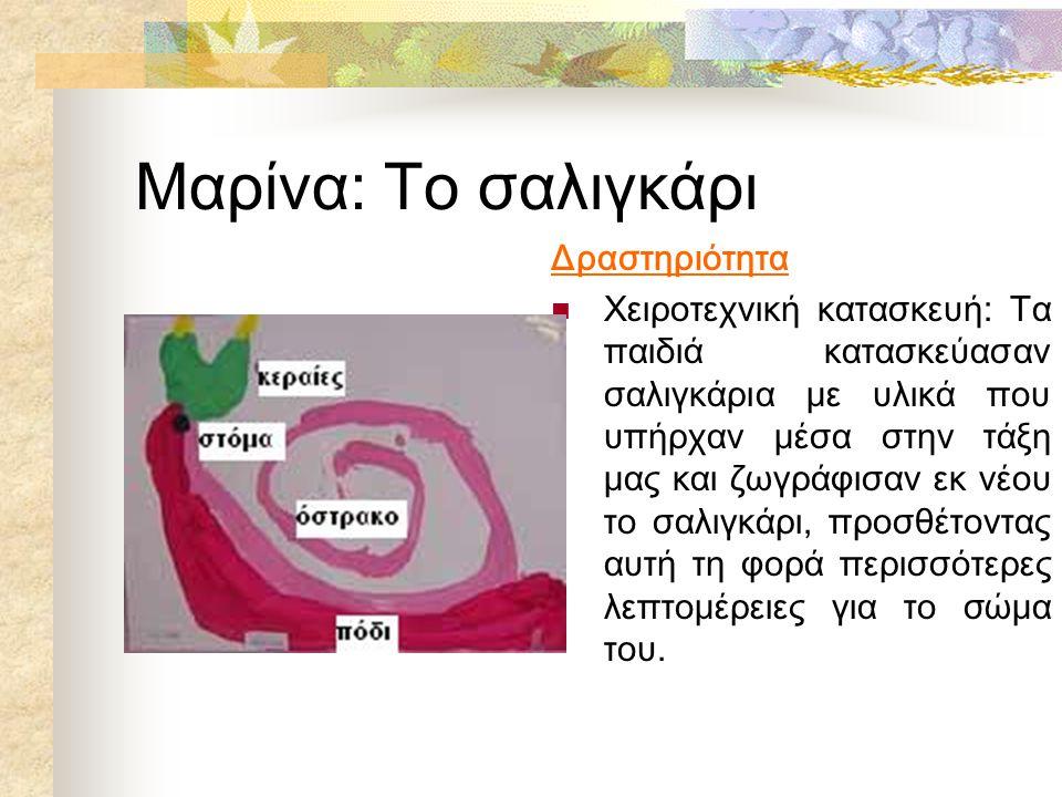 Μαρίνα: Το σαλιγκάρι Δραστηριότητα