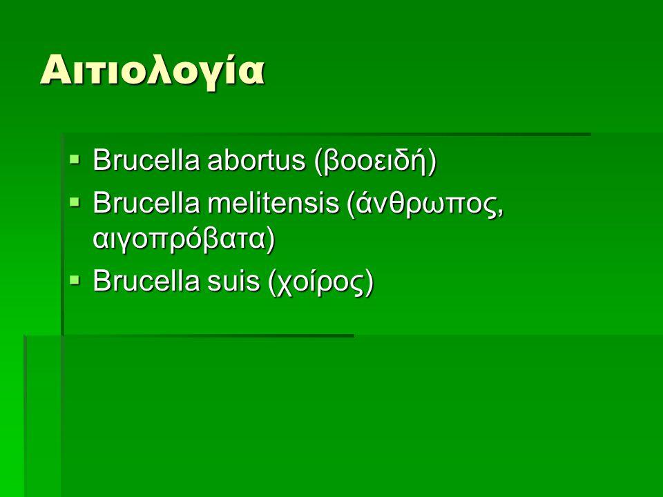Αιτιολογία Brucella abortus (βοοειδή)