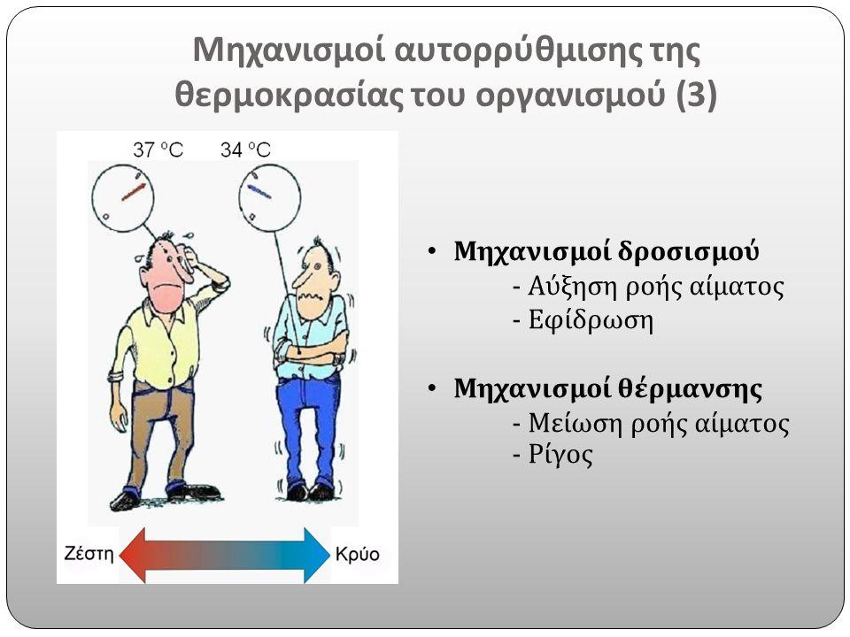 Μηχανισμοί αυτορρύθμισης της θερμοκρασίας του οργανισμού (3)
