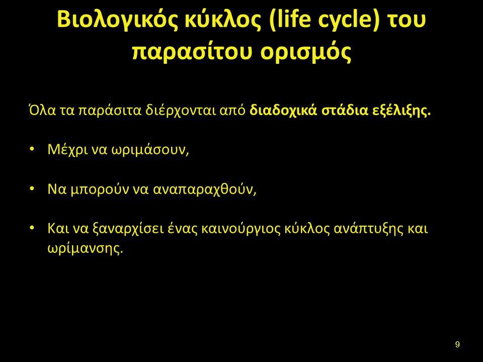 Βιολογικός κύκλος –κύκλος εξέλιξης