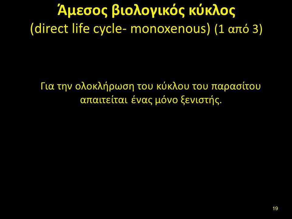 Άμεσος βιολογικός κύκλος (2 από 3)