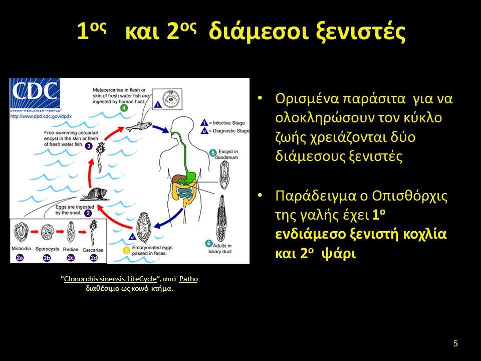 Διαβιβαστής- Μεταδότης Βιολογικοί διαβιβαστές (Vector biological vector)