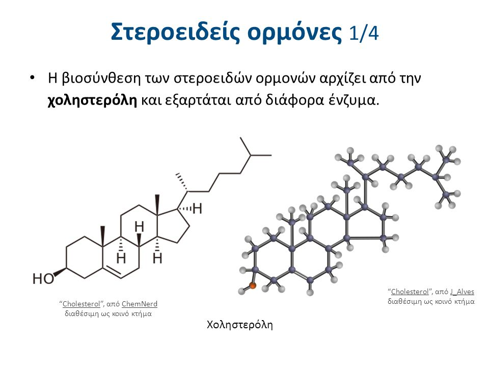 Στεροειδείς ορμόνες 2/4 Κυκλοπενταφαινανθρένιο