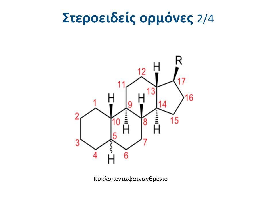 Στεροειδείς ορμόνες 3/4 Βασική δομή στεροειδούς
