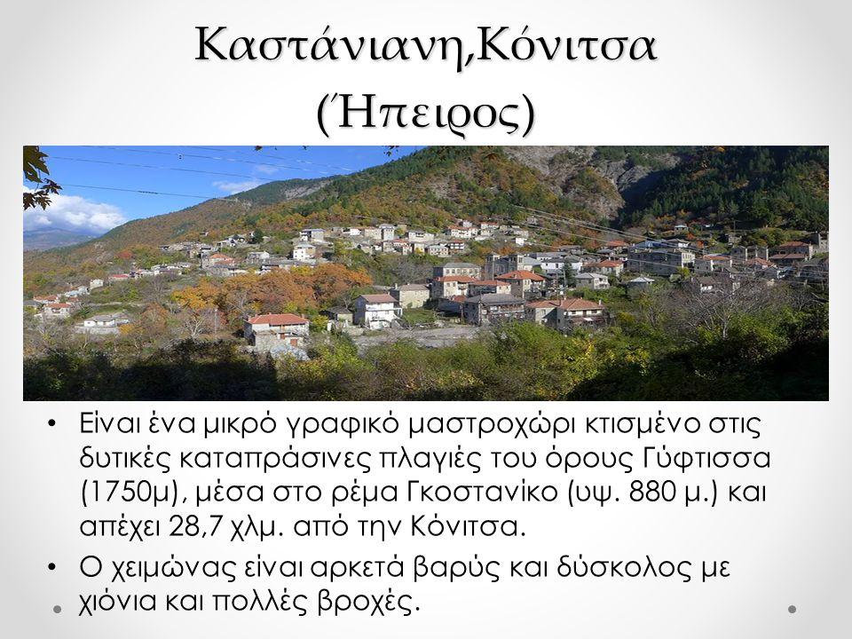 Καστάνιανη,Κόνιτσα (Ήπειρος)