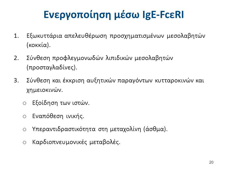 Ενεργοποίηση χωρίς IgE-FcεRI