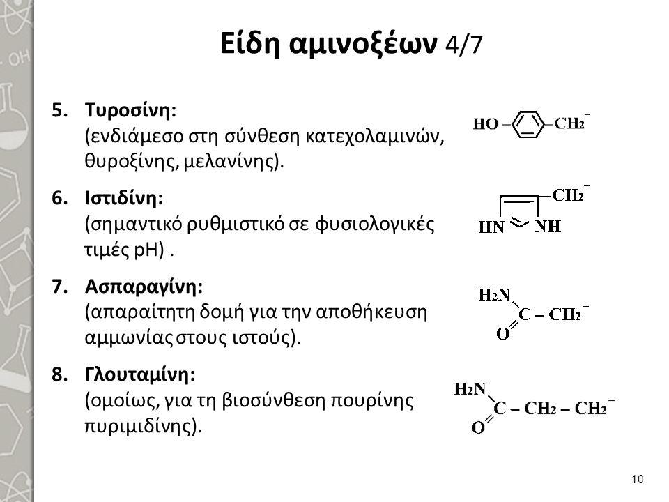 Είδη αμινοξέων 5/7 ΑΟ με πολικές αρνητικά φορτισμένες R Ασπαρτικό: