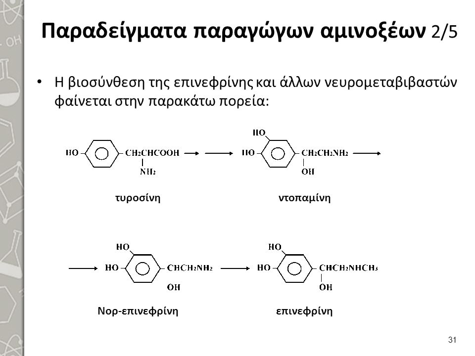 Παραδείγματα παραγώγων αμινοξέων 3/5