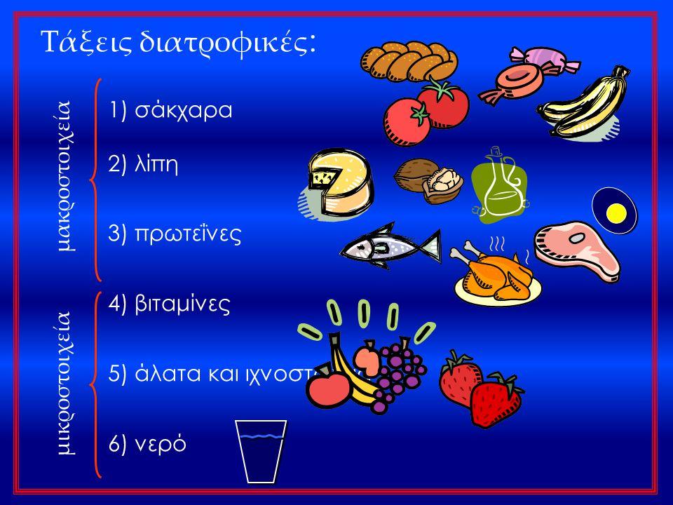Τάξεις διατροφικές: 1) σάκχαρα 2) λίπη 3) πρωτεΐνες μακροστοιχεία
