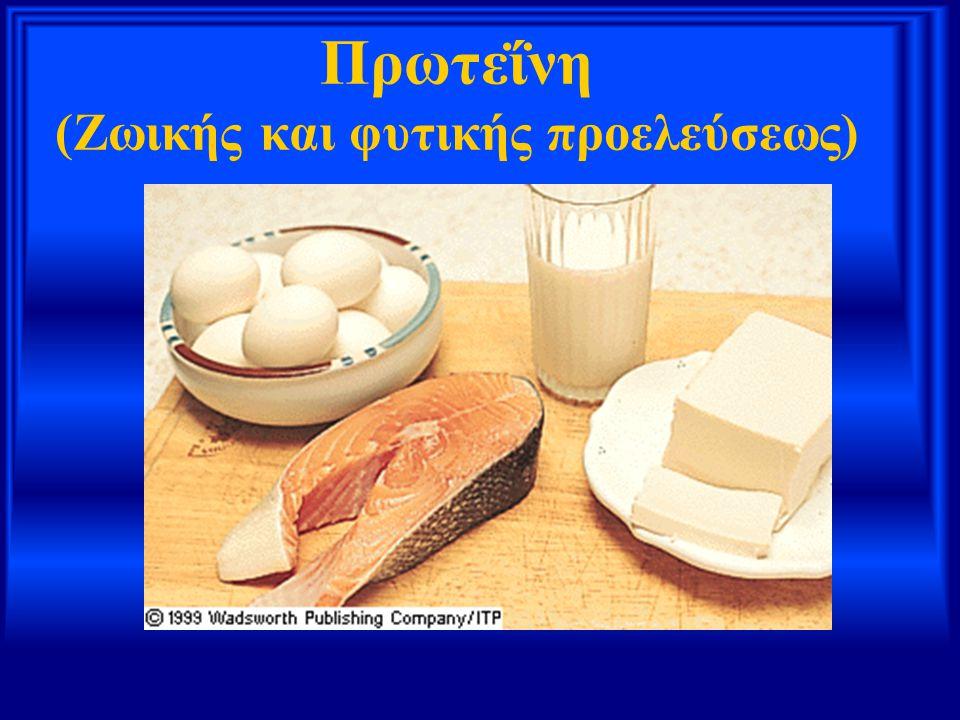 Πρωτεΐνη (Ζωικής και φυτικής προελεύσεως)