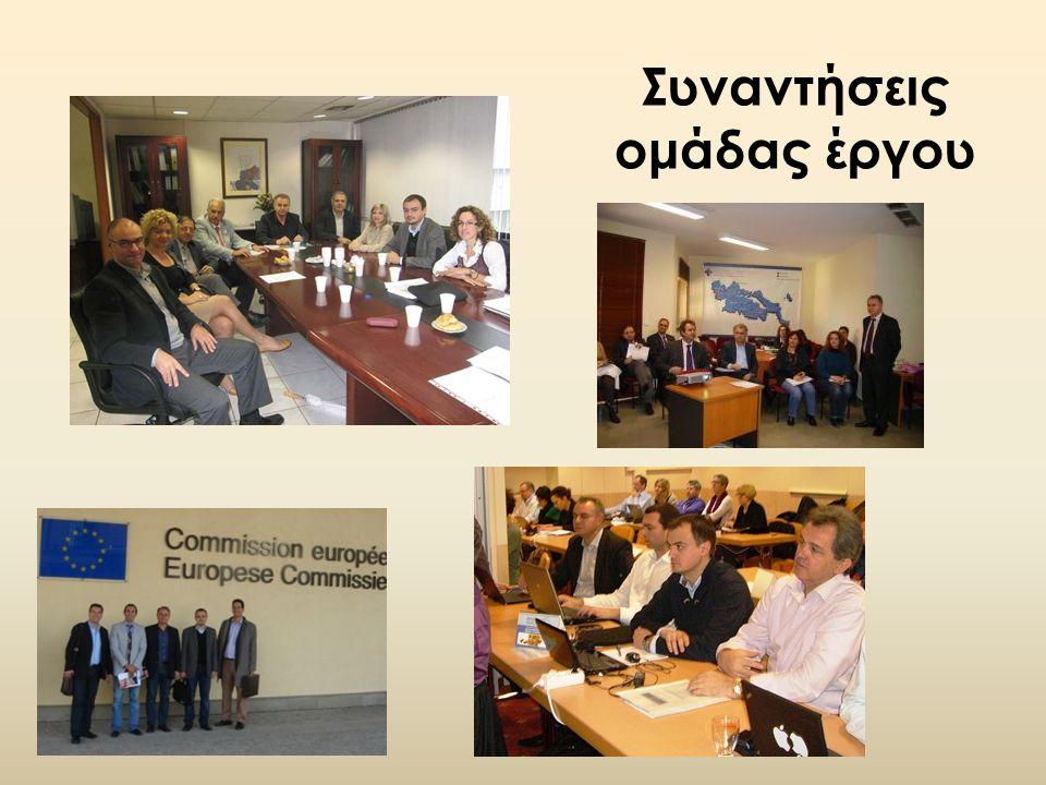 Συναντήσεις ομάδας έργου