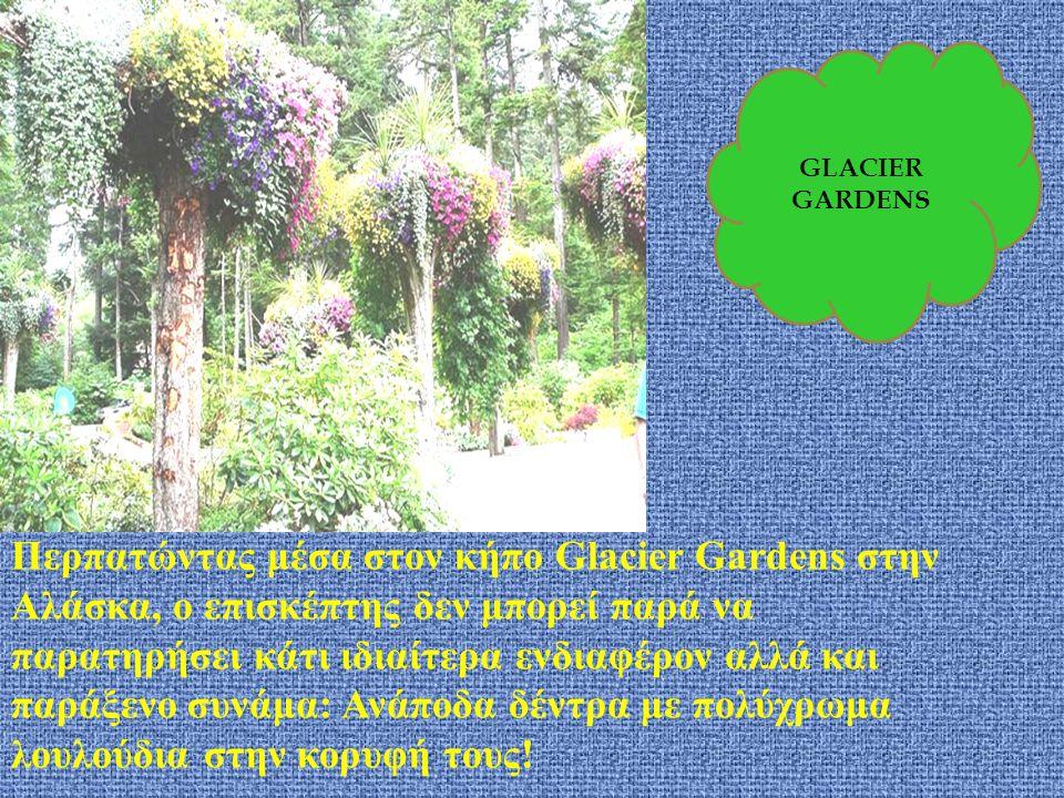 GLACIER GARDENS.