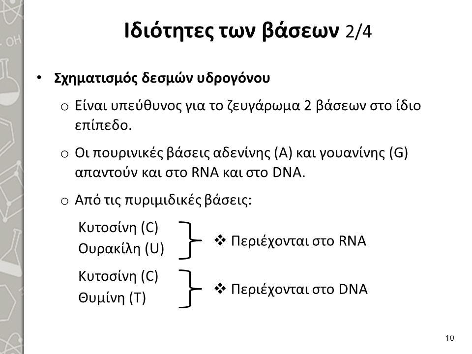 Ιδιότητες των βάσεων 3/4 Συμπεράσματα: Το RNA δεν περιέχει Τ. Το DNA δεν περιέχει U. Από πειράματα, με ακτίνες Χ, βρέθηκε ότι:
