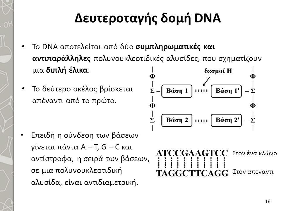 Τοπολογία-χημικές μεταβολές DNA 1/3