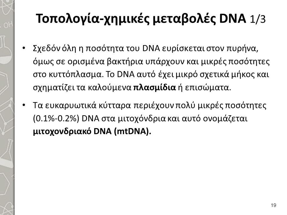 Τοπολογία-χημικές μεταβολές DNA 2/3