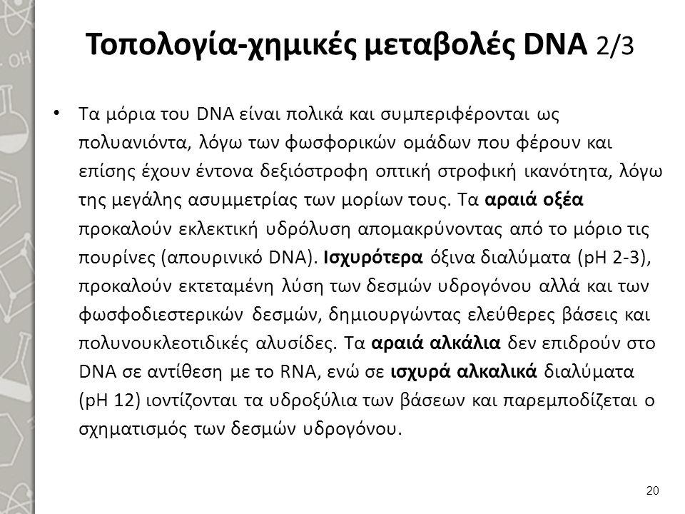 Τοπολογία-χημικές μεταβολές DNA 3/3