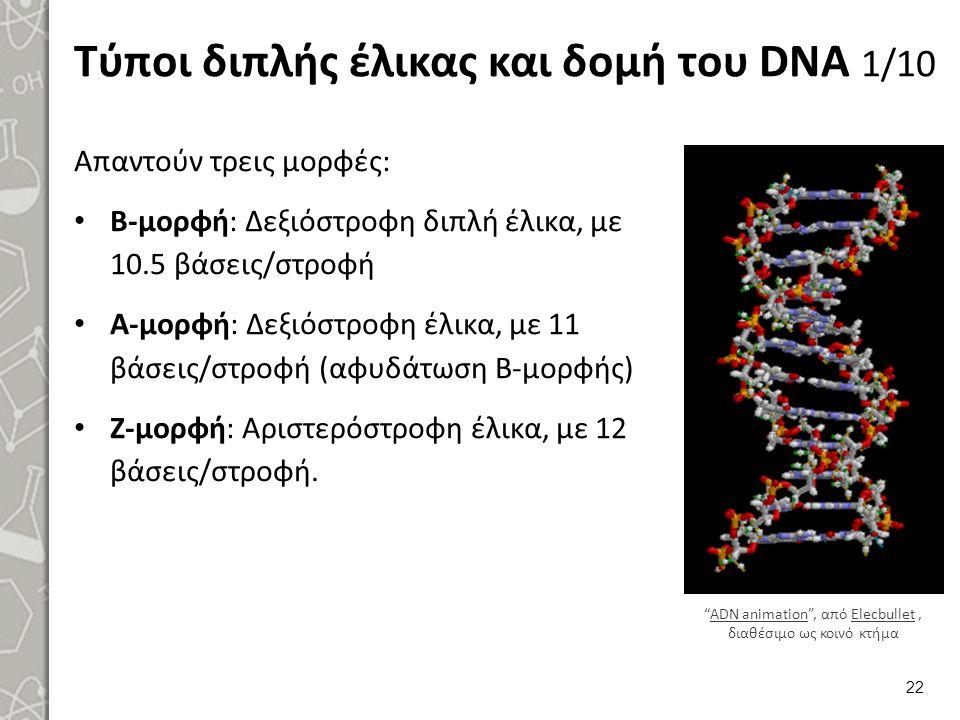 Τύποι διπλής έλικας και δομή του DNA 2/10