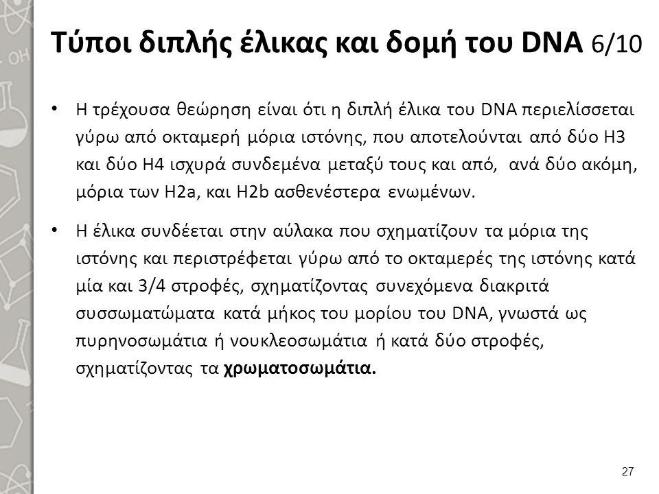 Τύποι διπλής έλικας και δομή του DNA 7/10
