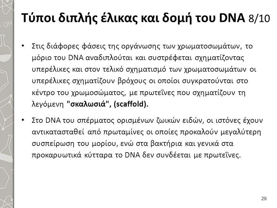 Τύποι διπλής έλικας και δομή του DNA 9/10