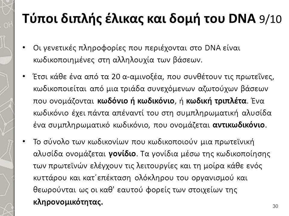 Τύποι διπλής έλικας και δομή του DNA 10/10