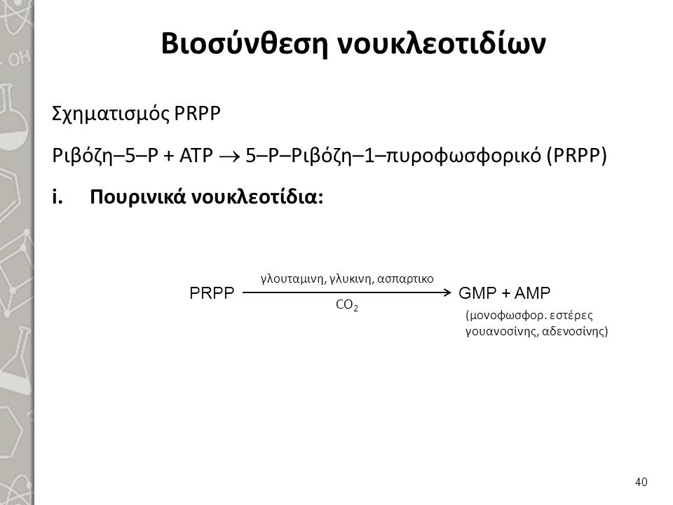Πυριμιδινικά νουκλεοτίδια