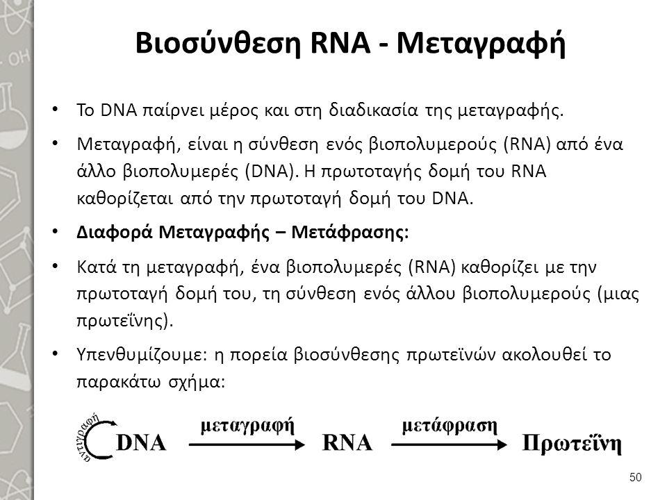 Τύποι RNA Υπάρχουν 3 τύποι RNA, που παίρνουν μέρος στη σύνθεση των πρωτεϊνών: