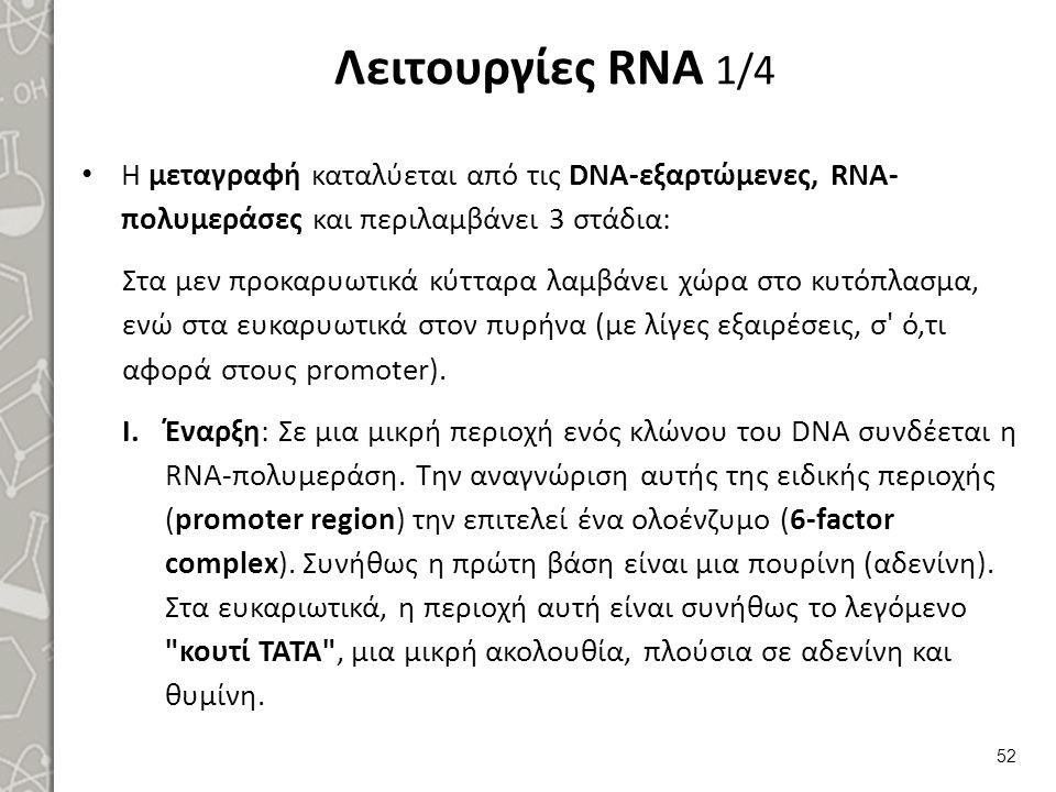 Λειτουργίες RNA 2/4